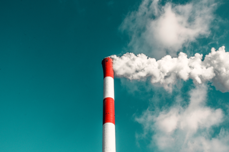 The Environment Committee votes to cut funding for incineration
